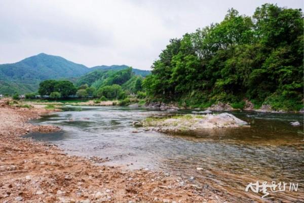 01  홍천아트캠프 앞을 흐르는 맑은 내촌천  [최갑수 촬영].jpg