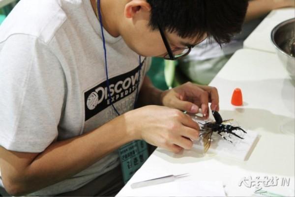 애완곤충경진대회-곤충표본왕.jpg
