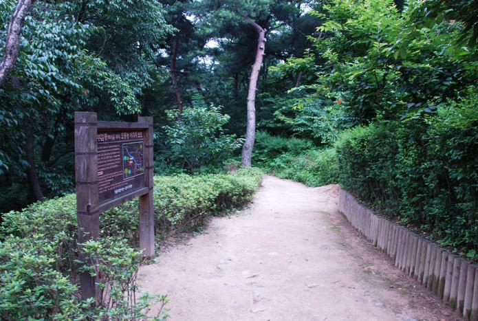 서울 한복판의 숨겨진 비밀정원