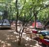 올여름엔 가까운 도심 속 공원으로 캠핑을 떠나보자