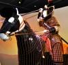 고대 삼국시대 말 갑옷 18점 처음으로 한 자리에서 만나다.